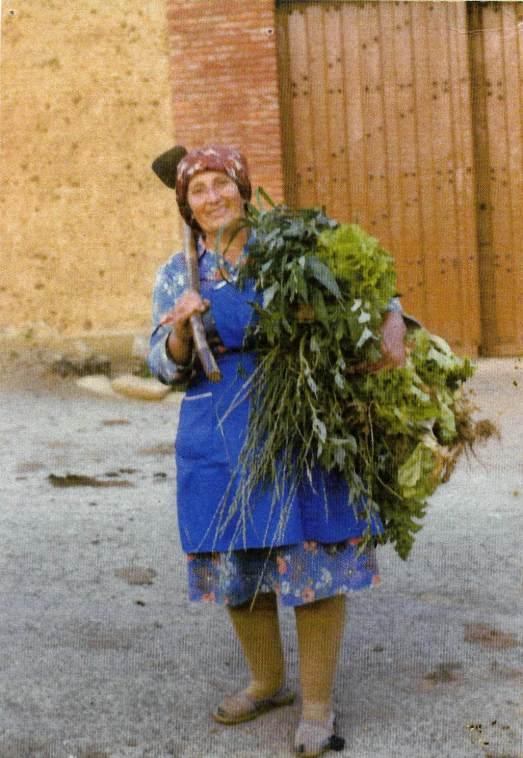 141 Nieves con verdura